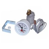Термоманометр Ferroli Pegasus. 39806020